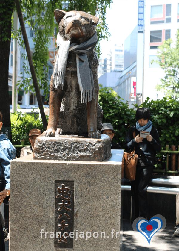 tokyo statue chien achiko histoire race